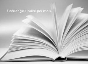 challenge-un-pavc3a9-par-mois