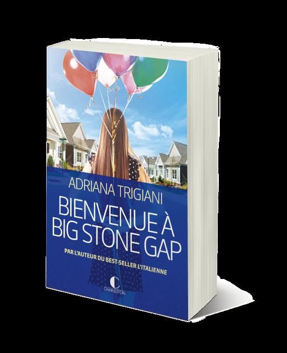 Bienvenue_a_big_stone_gap_3D