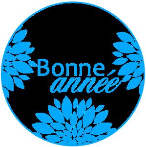 B-bonne-annee