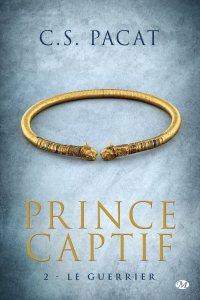 prince-captif,-tome-2---le-guerrier-572837