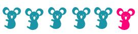 coup de coeur 5+ koala