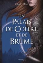 un-palais-d--pines-et-de-roses,-tome-2---un-palais-de-colere-et-de-brume-1011701-264-432